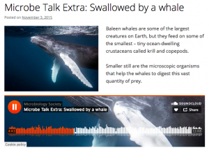 Microbe Talk Extra